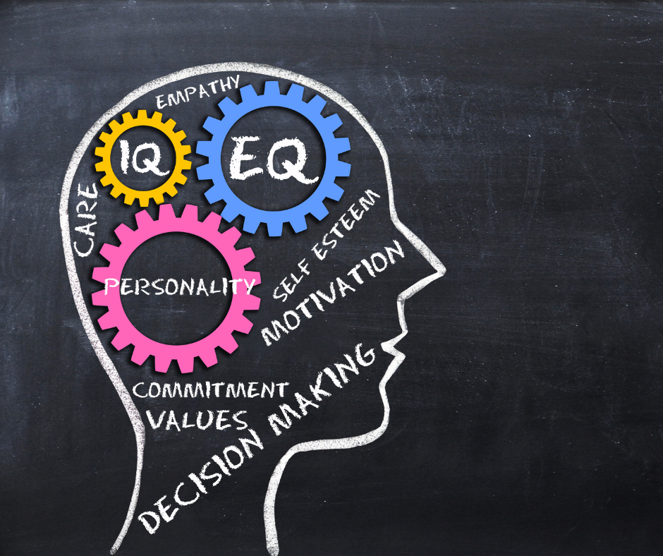 emotional intelligence equals success leadership development
